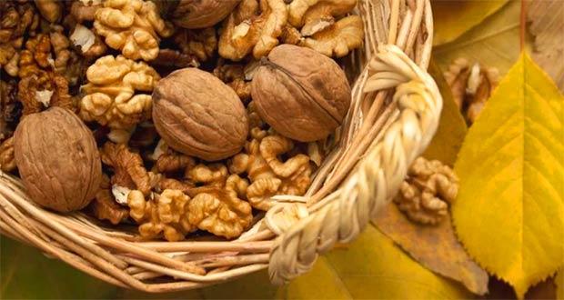 Сбор урожая орехов
