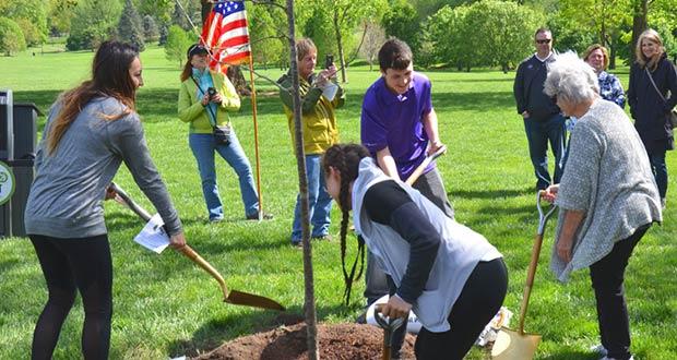 Молодые люди сажают деревья