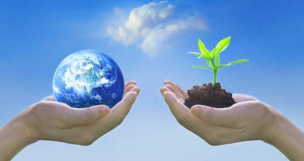 Главные символы торжества: планета и дерево