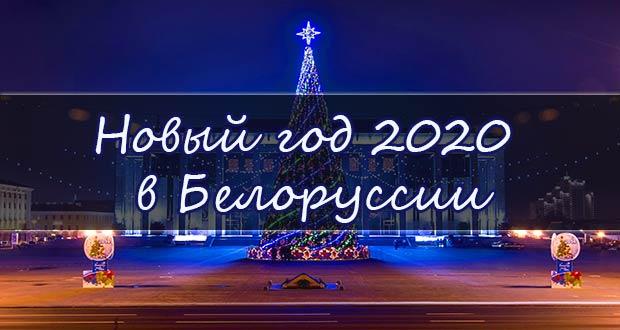 Красивая новогодняя ёлка в Белоруссии