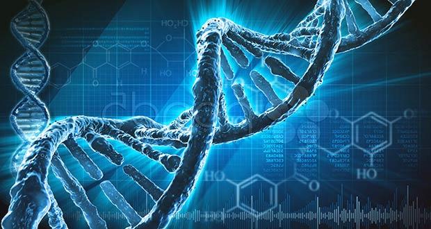 Технология изменения ДНК человека