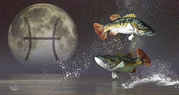Гороскоп на 2020 год для Рыб: женщин и мужчин
