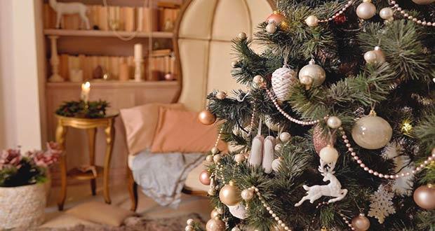 Новогодняя живая ёлка в комнате