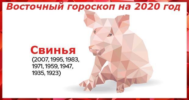 Гороскоп на 2020 год для Свиньи: женщины и мужчины