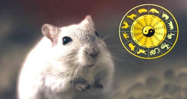 Год Белой Крысы по восточному гороскопу 2020