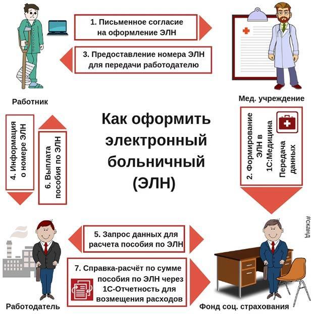 Схема оформления больничного листа в 2020 году для сотрудника