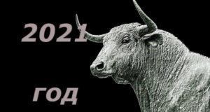 2021 год быка