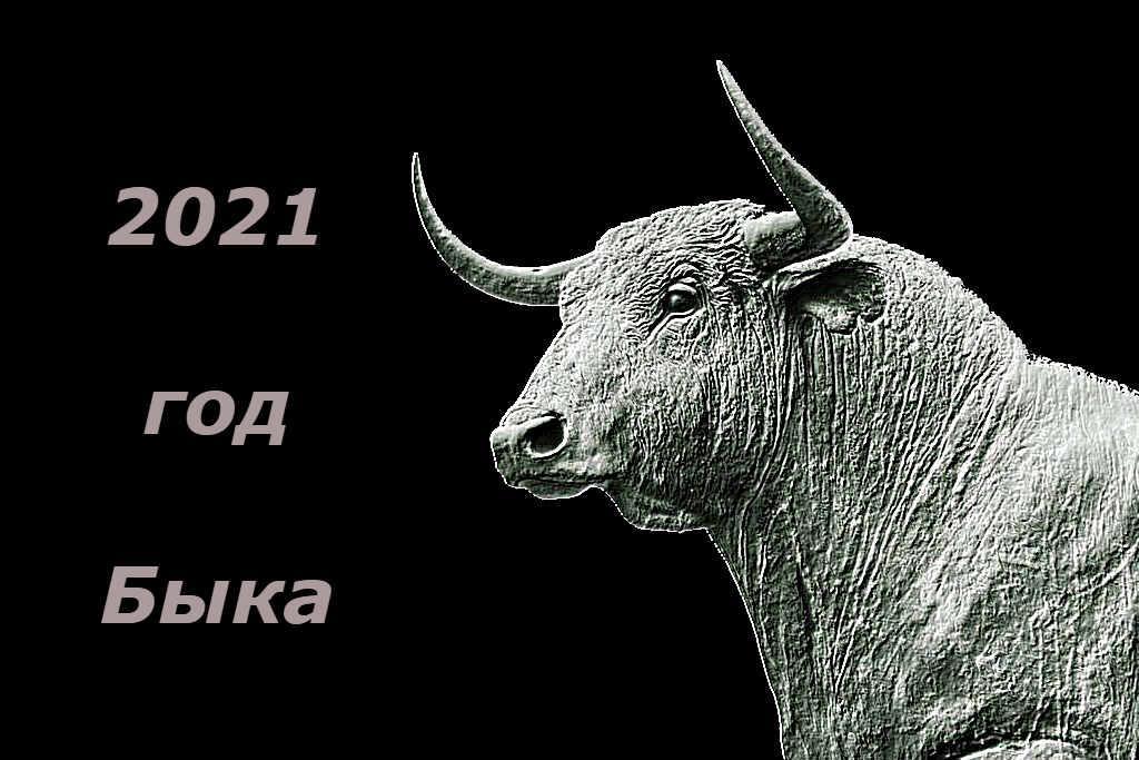 Символ года 2021