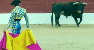 Чего ждать от быка